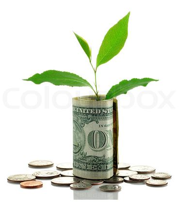 Small Tree Inside Dollar Bill